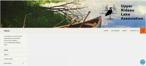 web page pic