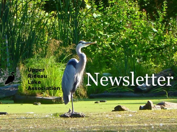 URLA Newsletter Feb. 2019