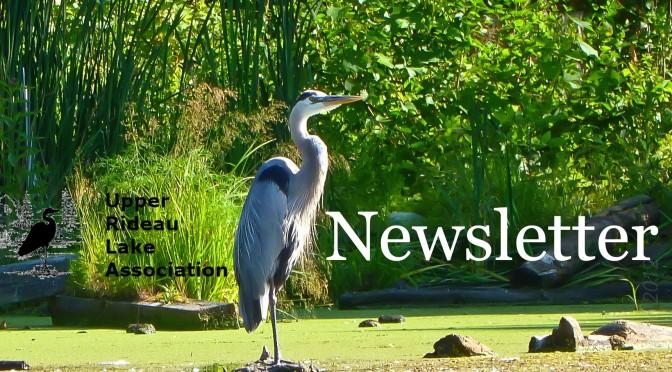 URLA newsletter